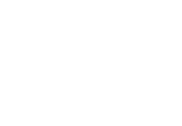 effingstore