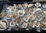 TEQUILA LIME MIGNONETTE